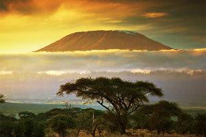 mt-kilimanjaro-comp