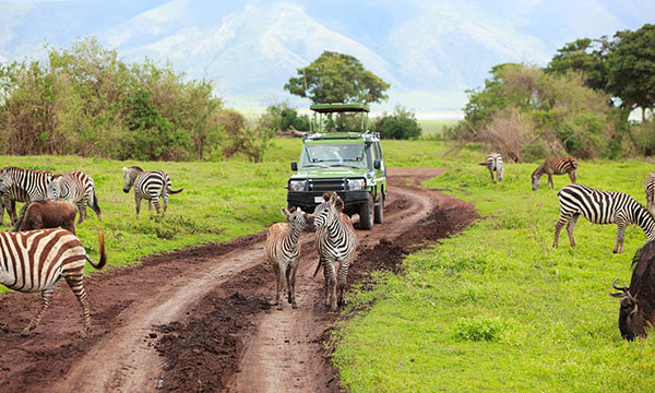 tanzania-adventure-tours-sm-comp